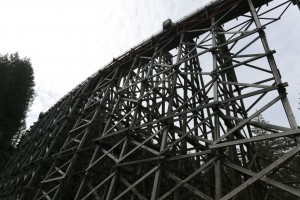 Kinsol Trestle Vancouver Island